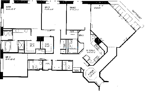 950 N Michigan Floorplan - D Tier*